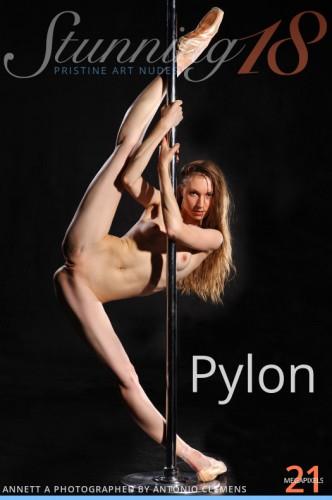 ST18 – 2013-11-13 – ANNETT A – PYLON – by ANTONIO CLEMENS (124) 3744×5616