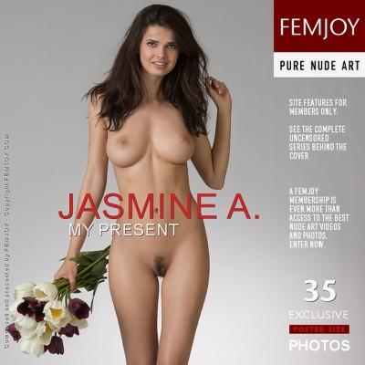 FJ – 2013-12-25 – Jasmine A. – My Present – by Stefan Soell (35) 2667×4000