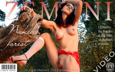 ZM – 2011-07-03 – Libretto – Naked forest – by Fadin (Video) DivX | WMV 720×576