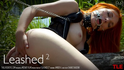 TLE – 2015-12-18 – AMBER A – LEASHED 2 – by SHANE SHADOW (Video) Full HD MP4 1920×1080