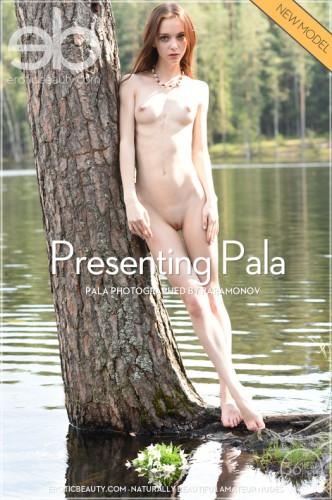 EB – 2017-02-23 – PALA – PRESENTING PALA – by PARAMONOV (62) 4912×7360