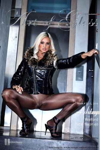 AG – 2016 Week 37-2 – Ashley & Wolford Fatal Neon 40 [part VII] (49) 2000×3000