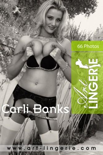 AL – 2010-12-20 – Carli Banks – 2190 (66) 2000×3000