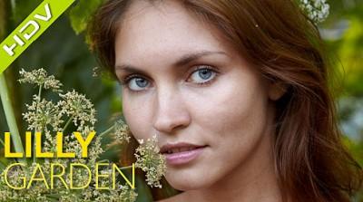 lilly_garden