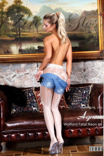 AG – 2013 Week 52-6 – Agness & Wolford Fatal Neon 40 [part II] (49) 2000×3000