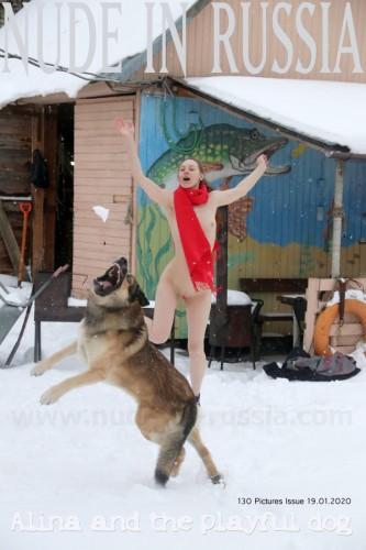 NIR – 2020-01-19 – Alina S 2 – Set 2 – The playful dog (130) 1800×2700