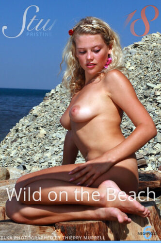 ST18 – 2020-10-24 – ELKA – WILD ON THE BEACH – by THIERRY MURRELL (165) 2048×3072